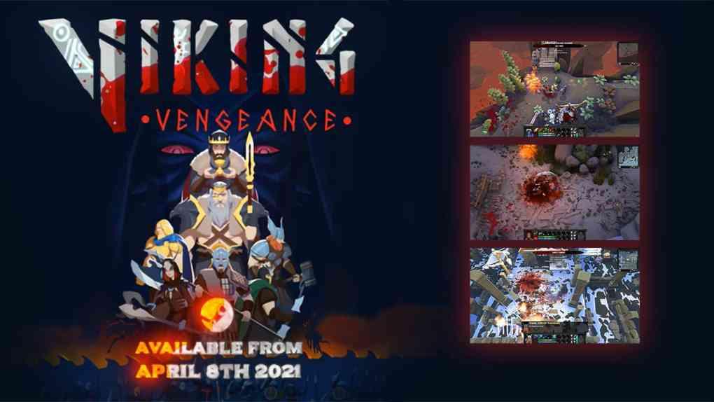 viking vengeance cover